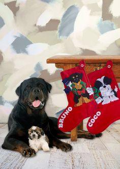 Dog Personalized Christmas Stockings, Xmas Stockings, Red Felt Stockings, Christmas Stocking, Custom Christmas Stockings - pinned by pin4etsy.com