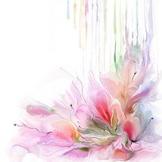 """Features:  -HDR Giclee print on archival-quality enhanced matte paper.  -Made in the USA.  Subject: -Floral and botanical.  Gender: -Neutral.  Size: -Small 18""""-24"""".  Style (Old): -Contemporary.  Color"""