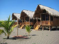 Surfing Turtle Lodge in Nicaragua-going in January. You stay right on the beach where sea turtles hatch during a few months in the winter almost every day