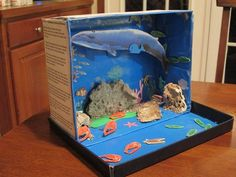 Nap Time News: Nora's Habitat Diorama - The Blue Whale Ocean Projects, Animal Projects, Science Projects, School Projects, Projects For Kids, Crafts For Kids, Craft Kids, Project Ideas, Ocean Diorama