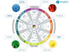 cyberlabe: Relationships Between MBTI DISC and Insights Insights Discovery, Self Discovery, Coaching, Systems Thinking, Mbti Personality, Knowledge And Wisdom, Entp, Community Manager, Emotional Intelligence