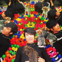 This is what my dreams look like  #buzzfeednow #puppies by eugeneleeyang