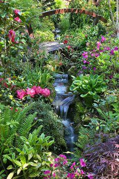 Garden stream late spring (May 25) by Four Seasons Garden, via Flickr