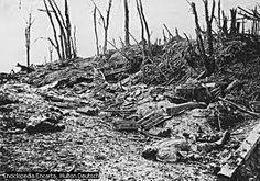 bosque con varios muertos