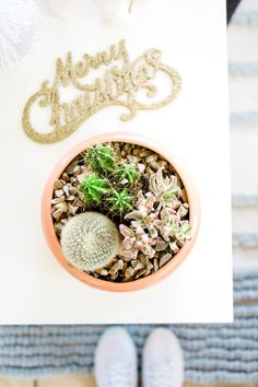 Gift Ideas for the Nature Lover in Your Life