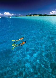 snorkeling, this is on my bucket list, Id love to go to Hawaii and go snorkeling and see the pretty fish(not electric eels tho!)