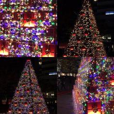 Roppongi glass box x-mass tree