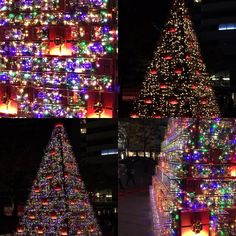 Roppongi glass box x-mass tree