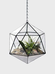 Hanging Handmade Glass Terrariums and Planters by Score+Solder