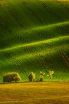 So green!