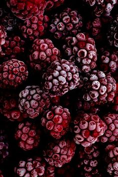 Just beautiful fruit. What is your favourite fruit? Food Wallpaper, Wallpaper Backgrounds, Aesthetic Iphone Wallpaper, Aesthetic Wallpapers, Burgundy Color, Burgundy Outfit, Burgundy Shoes, Red Plum, Dark Red
