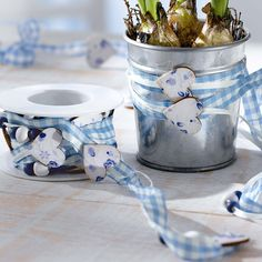 Frühling in Bayern! Blue & white gingham ribbon around mason jars