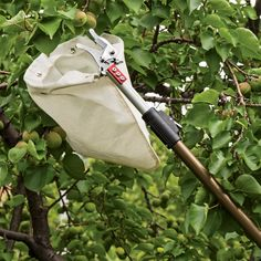 Telescoping Fruit Picker with 10ft Reach - Collect faster with less damage and waste - Collection bag will hold about 10 large apples