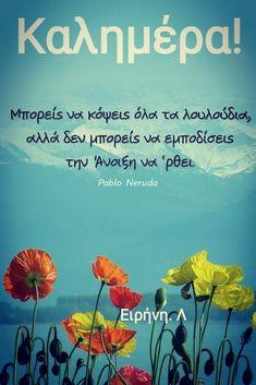 Pablo Neruda, Good Morning, Spirituality, Wallpapers, Buen Dia, Bonjour, Spiritual, Wallpaper, Good Morning Wishes