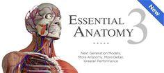 Essential Anatomy 3: ecco la migliore app per conoscere e studiare meglio l'anatomia umana - http://www.tecnoandroid.it/essential-anatomy-3-migliore-app-per-conoscere-studiare-lanatomia-umana/