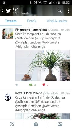 And than the challange got a # @Groenteam ore @FloraHolland gave the name #4dgnplantchallenge but now you can follow. it easy and so we create together a great challange.