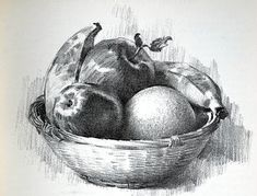 52 Fruit And Vegetable Drawing Ideas - Art Shading Drawing, Pencil Sketch Drawing, Pencil Shading, Pencil Art Drawings, Art Sketches, Drawing Ideas, Charcoal Drawings, Still Life Sketch, Still Life Drawing