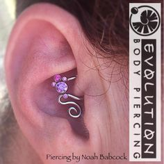 piercing Fresh piercing with jewelry by and with . Fresh piercing with jewelry by and with a bit of custom bending. (at Evolution Body Piercing) Body Jewelry Shop, Ear Jewelry, Tragus Jewelry, Body Jewelry Piercing, Gold Jewellery, Jewelry Accessories, Jewelry Making, Daith Piercing Schmuck, Ear Piercing
