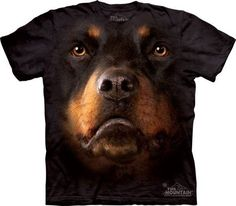 Zany Zak is proud to offer our Rottweiler dog face t-shirt! This T-shirt features an over-sized relaxed fit, with reinforced double-stitching on all seams. Rottweiler Training, Rottweiler Puppies, Dog Training, T Shirt Chien, Pet Dogs, Dogs And Puppies, German Dog Breeds, Pet Breeds, 3d Dog