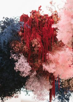 Wedding in Big Sur, California — STUDIO MONDINE - Floral Inspiration - Abstract with colors and textures // Makes you second guess what you're looking at, which I alway - Arte Floral, Flower Installation, Big Sur, Dried Flowers, Color Inspiration, Wedding Inspiration, Bunt, Backdrops, Bloom