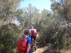Wandelen door de mooie natuur van Mallorca