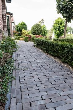 Brick Garden, Garden Paving, Garden Paths, Paver Path, Carport Designs, Lugano, Garden Inspiration, Beautiful Gardens, Home Projects