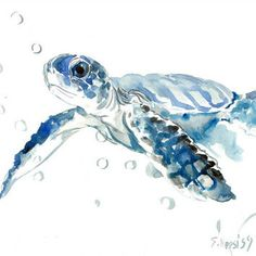 Sea Turtle painting, original watercolor painting, 14 X 11 in, blue nautical wall art, light blue minimalist from ORIGINALONLY on Etsy. Watercolor Animals, Watercolor Paintings, Watercolor Paper, Watercolor Jellyfish, Jellyfish Painting, Tattoo Watercolor, Art Original, Original Paintings, Sea Turtle Painting