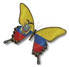 butterfly flag ecuador   Stock image of 'Ecuador flag on butterfly'
