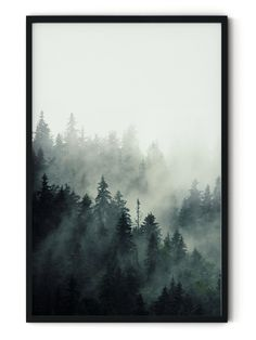 Foggy Forest Framed Wall Art Foggy Forest, Misty Forest, Forest Mountain, Forest Art, Pine Tree Painting, Forest Painting, Forest Illustration, Tree Wall Decor, Painting Inspiration