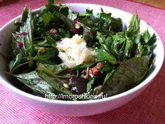 Блюда из молодой майской крапивы. Рецепты