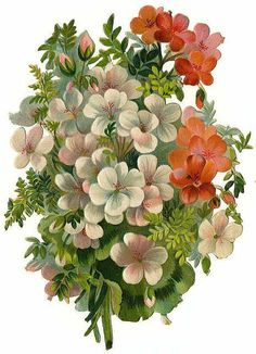 Victorian Flowers Sticker.....❤: