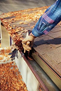 Need eavestrough cleaning in Ottawa, ON? Find top eavestrough cleaning Ottawa services at Ottawa Eavestrough Group. We love to do your eavestrough cleaning! Eavestrough Cleaning, Gutter Cleaning, Fall Cleaning, Just In Case, Just For You, Diy Home Repair, Roof Repair, Home Repairs, Spring Home