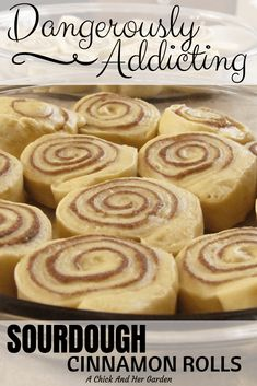 Dough Starter Recipe, Sourdough Starter Discard Recipe, Starter Recipes, Sourdough Cinnamon Rolls, Sourdough Recipes, Sourdough Coffee Cake Recipe, Sourdough Biscuits, Sourdough English Muffins, Real Food Recipes