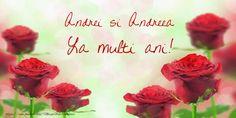 Andrei si Andreea Birthday Wishes, Rose, Plants, Mai, Women's Fashion, Facebook, Education, Happy Brithday, Happy Anniversary Cards