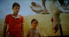 Le zampe della gallina penzoloni e con le ali spalancate.