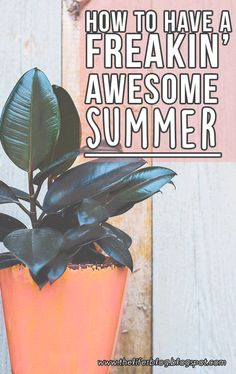 Neww posttt // how to have a freaking awesome #amazing summer #summer