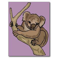 Koala bear 13c postcard