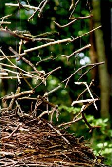 Cornelia Konrads : rising fall (2001) Les Vents des Forêts - Sentier d'Art en Paysage, Lahaymeix (France)