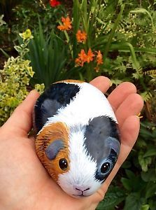 Guinea-pig-hand-painted-rock-pebble-stone-no-indoor-cage-hutch-run-or-food-bowl