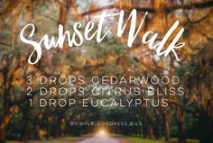 dōTERRA essential oils diffuser recipe. Sunset Walke using cedarwood, citrus bliss and eucalyptus for the most amazing scent to give you the warm relaxed feeling of being on an sunset walk.