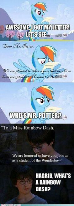 Rainbow Dash from Mlp fim meets Harry Potter. I lol'd so hard.