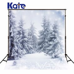 Find More Background Information about Kate Digital Printing Photography Winter Photo Studio Backdrop Frozen Snow White Background for Wedding Backdrop,High Quality snow brush for car,China snow white and the seven dwarfs characters Suppliers, Cheap background stand from Art photography Background on Aliexpress.com