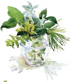 Watercolor: Setting Up and Painting a Floral Still Life - Web Features - Blogs - Artist Daily An outstanding blog?