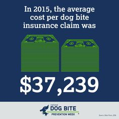 Injury Claims, State Farm, Pet Care Tips, In 2015, Training Your Dog, Cute Dogs, Public, Medical, Number