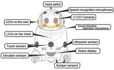 The schematics.
