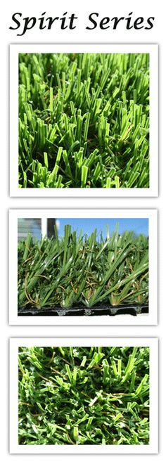 The Synthetic Grass Store is a nationwide wholesale warehouse distributor of Synthetic Lawns, Artificial Grass, Putting Greens and Fake Grass.  We generally sell to contractors & Do it yourselfer's (DIY's). We are open to the public and we will ship the artificial turf nationwide.  We buy in large volumes from the manufacturers so we can sell with low profit margins.