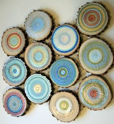 tree rings for wall decoration