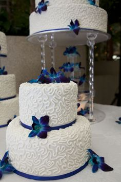 royal blue wedding cake decorated with white chocolate butter cream, satin ice fondant, cornelli lace and blue Singapore orchids