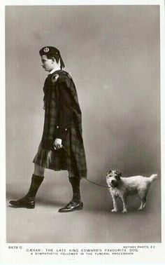 Prince of Wales (Edward VIII) Dogs, Fox terrier, Vintage dog