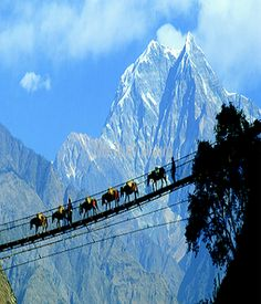 footbridge in Nepal.Would love to visit Nepal.not sure about the footbridge? North India Tour, Rope Bridge, High Bridge, Tibet, Wonders Of The World, Places To See, Mount Everest, The Good Place, Vietnam
